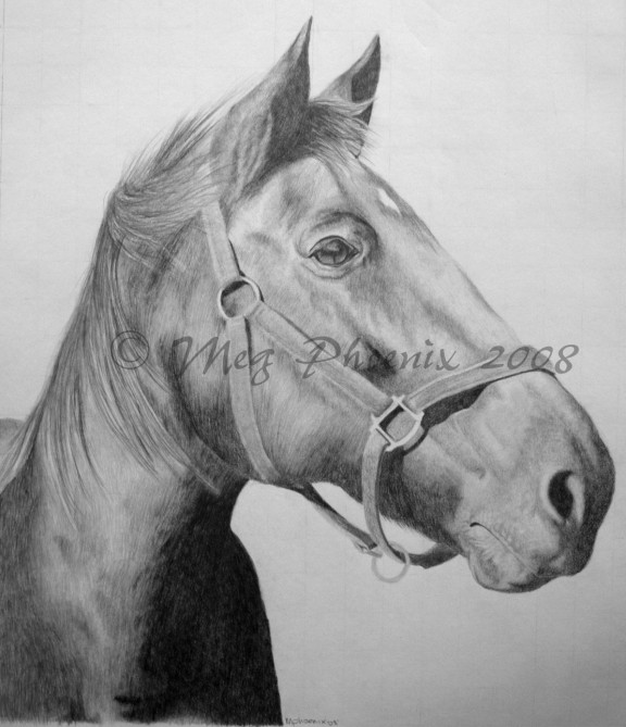 "Albion 18"" x 24"" pencil portrait"