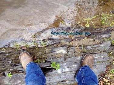 Dingman's Campgrounds nassau ny 2012
