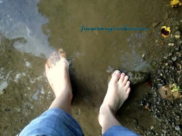 Kinderhook Creek 2012