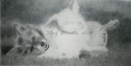 "R.I.P. Phoebe- 16"" x 23"" pencil portrait"