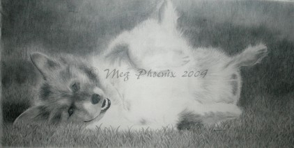 """R.I.P. Phoebe- 16"""" x 23"""" pencil portrait"""