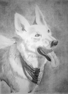 "Sasha- 18"" x 24"" pencil portrait"