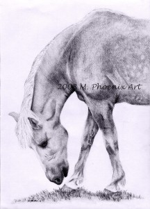 "Holidae Grazing 8"" x 10"" graphite pencil"