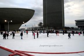 skating albany