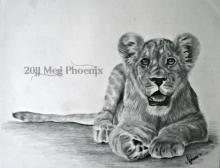 """Little Lion 14"""" x 11"""" graphite pencil"""