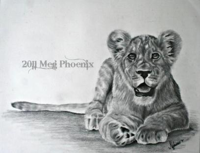 "Little Lion 14"" x 11"" graphite pencil"