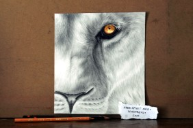 """Perseverance- 8"""" x 6"""" pencil/colored pencil portrait"""