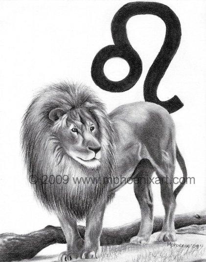 """Leo 6"""" x 8"""" graphite pencil"""