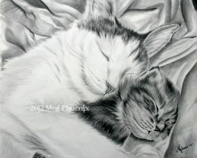 "Mother's Comfort 14"" x 11"" graphite pencil"