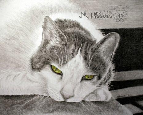 "R.I.P. Tyler 14"" x 11"" graphite/colored pencils"