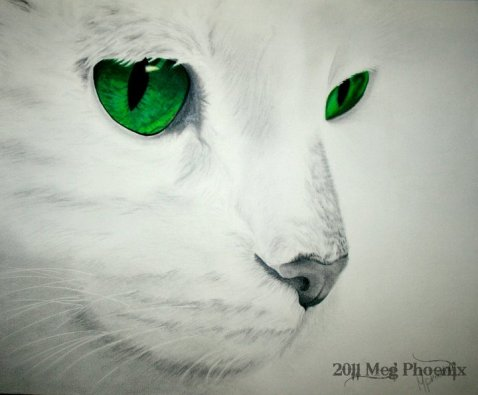 """The Eyes Have It 14"""" x 11"""" graphite/colored pencil"""