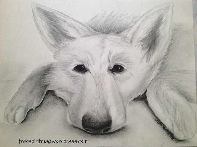 "Lazy Sasha 8"" x 6"" graphite pencil"