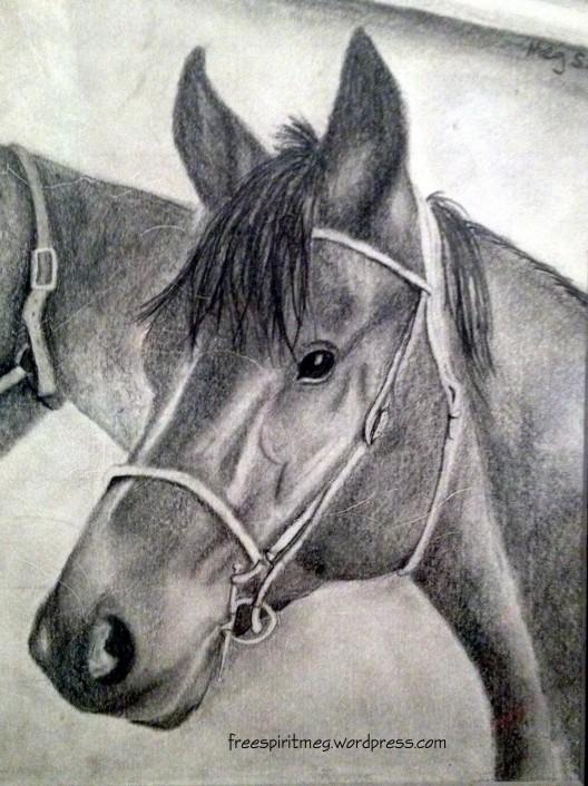 My horse Skyler. Miss him!