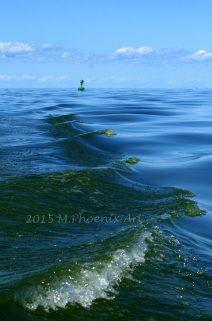 make waves print wm