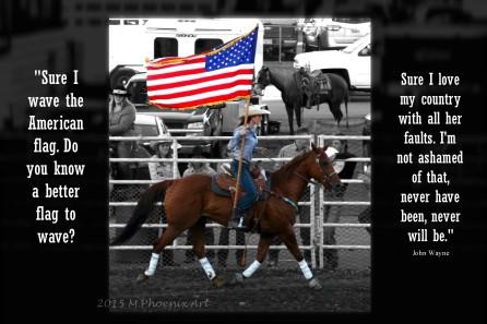 rodeo flag print quote wm