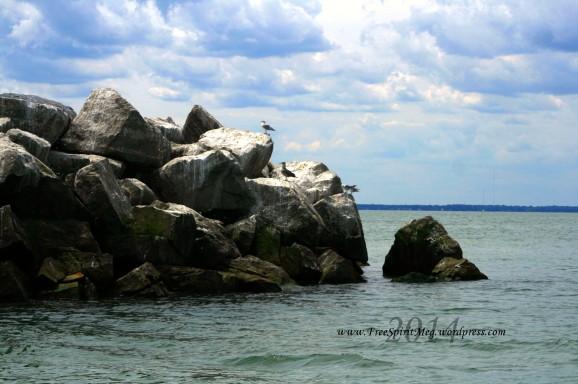 2014 lake erie1301