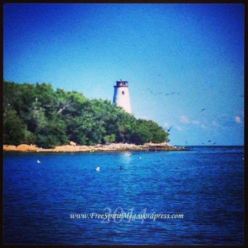 2014 West Sister Island