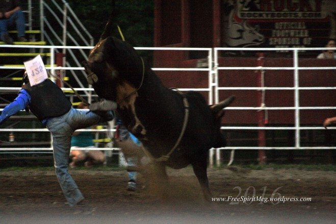 2016 DMRodeo1476