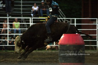 2016 DMRodeo1480