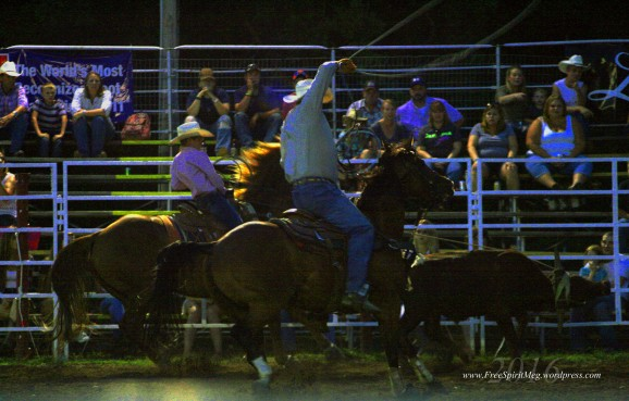 2016 DMRodeo1493