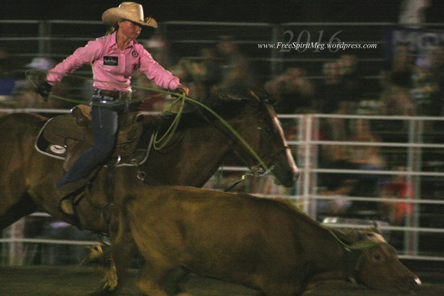 2016 DMRodeo1593