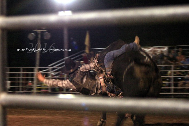 2016 DMRodeo1666