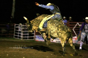 2016 DMRodeo1673