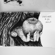 If a tree were to hand you an apple, what would it look like?
