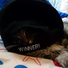 The Winner!