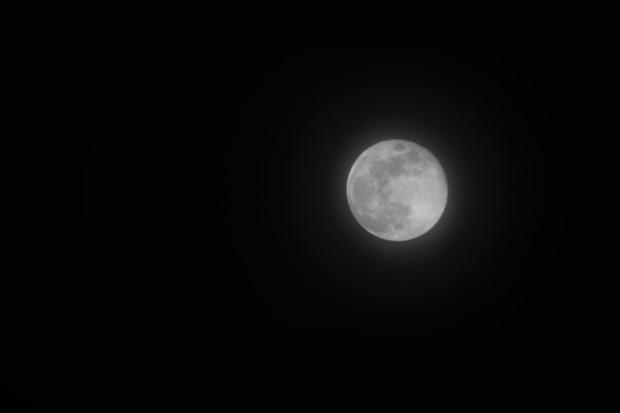blue moon 3.31.18 2