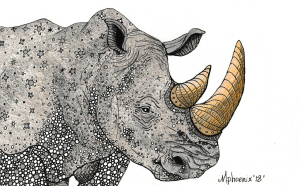 Rhinoceros Totem Animal