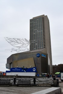 New England Aquarium (30)