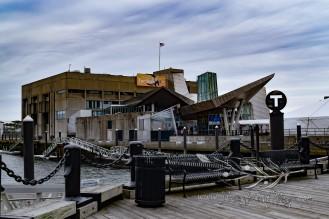 New England Aquarium (32)
