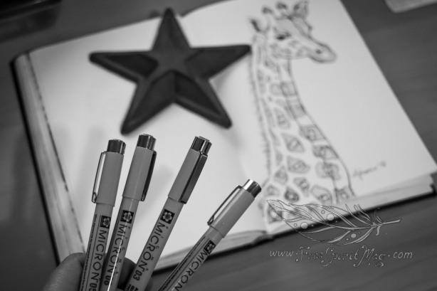 Micron Pens.jpg