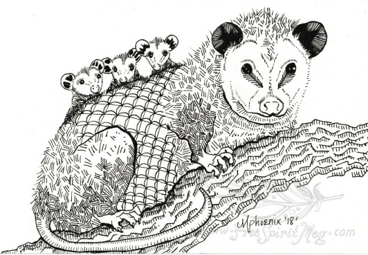 Opossum BW WM