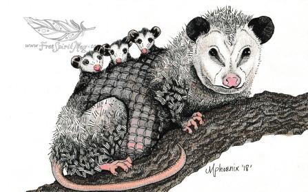 Opossum Totem