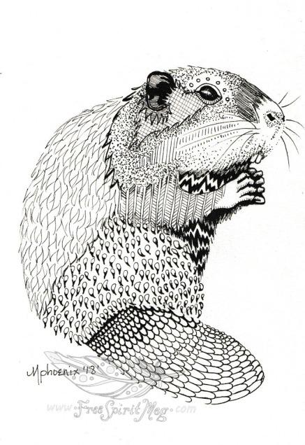 Beaver BW