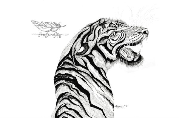 BW Tiger WM